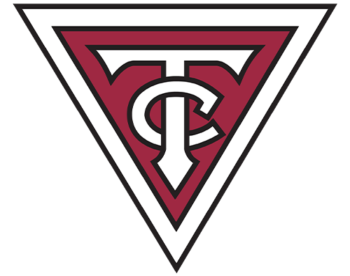 Twin City Group Icon