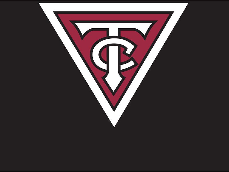 Twin City Group - Logo 800